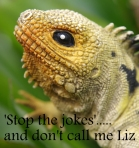 Stop the jokes and don't call me Liz - NoNeg