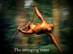 The swinging voter
