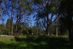 07-Cemetery broad shot