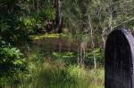 24-Headstone/creek