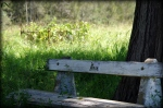 25- Gran bench