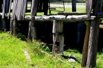 33- Old wooden piers.